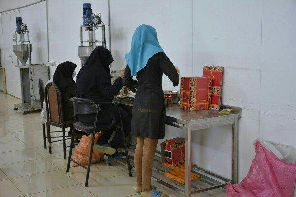 بانوان استان بوشهر سهم بالایی در اشتغال صنایع خرما و آبزیان دارند