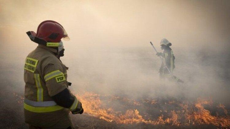 جزئیات آتش سوزی گسترده در بازار گل امام رضا(ع)
