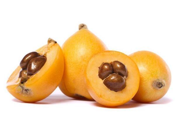 10 خواص باورنکردنی میوه ازگیل ژاپنی یا لوکوآت و روش کاشت آن در منزل